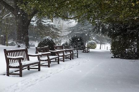 winter-4551699_1920