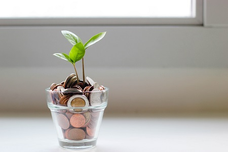 Plant growing from change